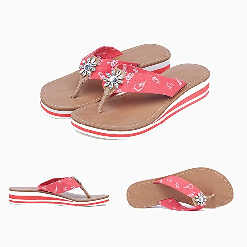 FEI Mules Clip Toe Drag Female Sandals New Style Thick Sole Slippers Flip Flip Slippers Fashion Outer Wear Women's Shoes Sandals Casual (Size : EU37/UK4.5-5/CN37) duPYx