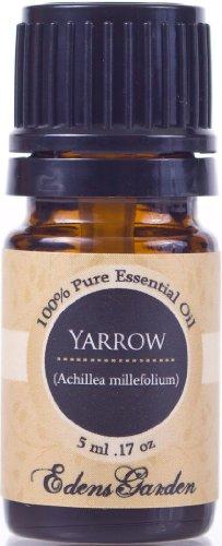 Yarrow 100% Pure thérapeutique grade huile essentielle 5 ml