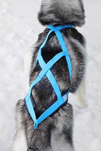 Northern Howl Weight Pulling Dog Harness, X-Back for Bike, Canicross, Sled, Joring, Blue