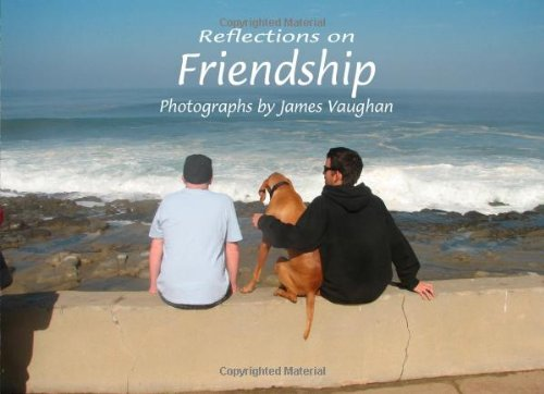 Reflections on Friendship (Volume 6) PDF
