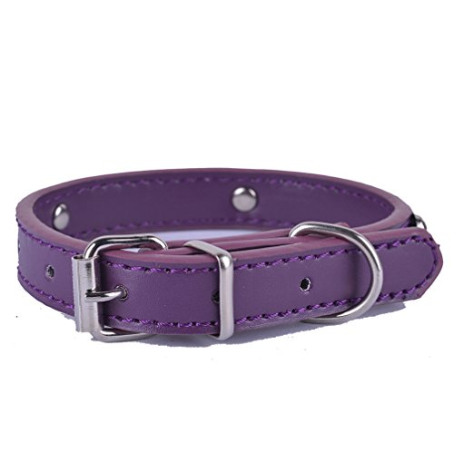 Fashion 8Colors Pu Leather Pet Dog Collar For Puppy Cat Chihuahua Small Dog Neck Strap Adjustable Size XS S M L Big Sale Purple - Locator Store Alloy