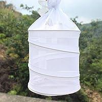 Kitabetty Mini Jaula del hábitat de la Mariposa y el Insecto, Caja ...