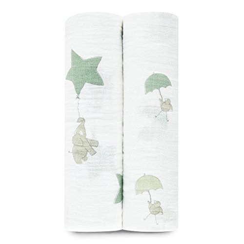 aden + anais swaddle 2 pack,up up and away
