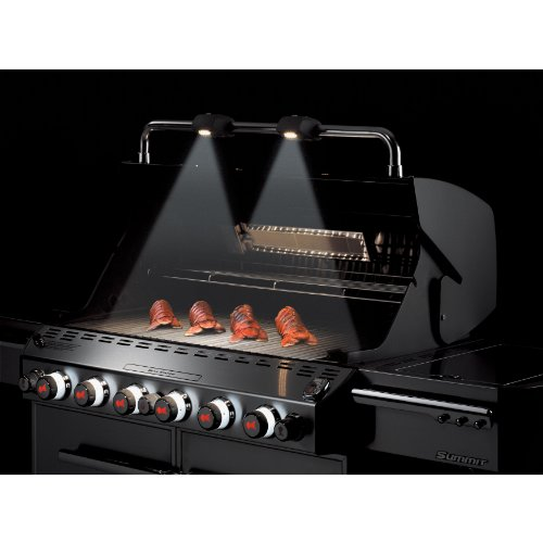weber summit 7370001 s 670 stainless steel 769 square inch 60 800 btu liquid propane gas grill. Black Bedroom Furniture Sets. Home Design Ideas