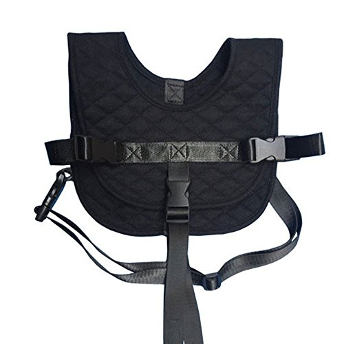 plane child harness - 4