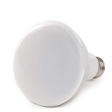 Greenice | Bombilla Inteligente LED Intensidad/Regulables Mediante Broadlink Rm Pro E27 12W 1000Lm