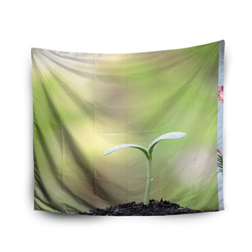 Pamime Home Decor Tapestry for Halloween Young Pumpkin Plant Growing Wall Tapestry Hanging Tapestries for Dorm Room Bedroom Living Room (50x60 Inches(130x150cm) -