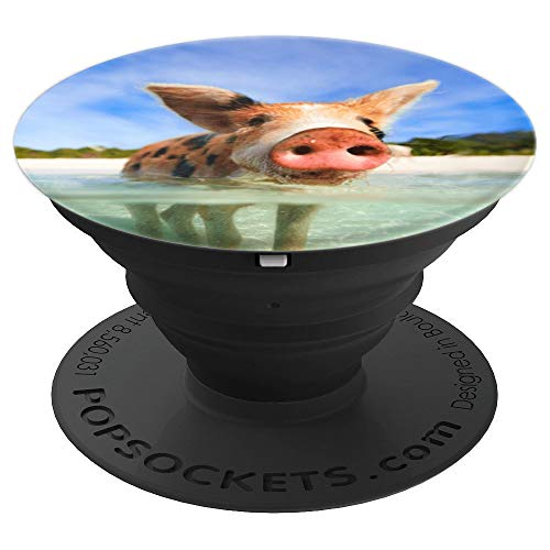 Bahamas pigs, swim with pigs, pigs in Bahamas - PopSockets Grip and Stand for Phones and Tablets