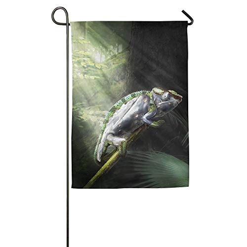 - HOOSUNFlagrbfa Chameleon Lizard Forest Garden Flag Indoor & Outdoor Decorative Flags for Parade Sports Game Family Party Wall Banner,1218inch