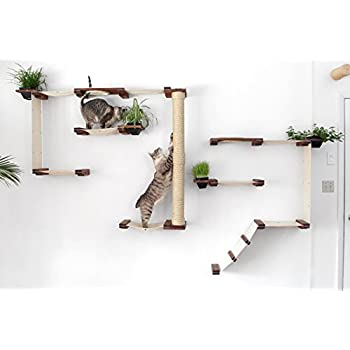 wall mounted cat furniture. Interesting Mounted CatastrophiCreations Cat Mod Garden Complex Handcrafted Wall Mounted  Tree Shelves With Planter For Grass Throughout Mounted Furniture L