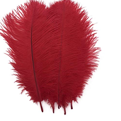 Shekyeon Red 10-12inch 25-30cm Ostrich Feather Home Decoration