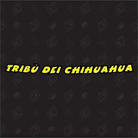 Speedwerk Motorwear Tribù Dei Chihuahua Visier Sticker Rossi Auto