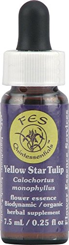 Flower Essence FES Quintessentials Yellow Star Tulip Supplement Dropper -- 0.25 fl oz ()