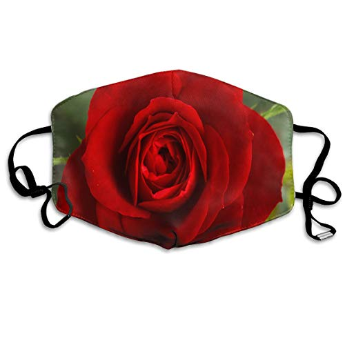 Anti Dust Mask Small Red Rose Face Mask Winter Healthy Washable For Unisex Halloween]()