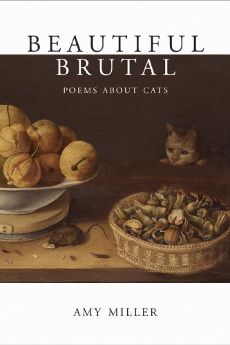 Beautiful Brutal Poems About Cats