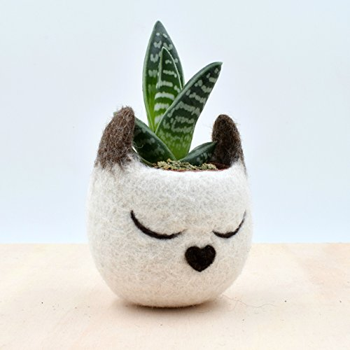 (Felt succulent planter | Siamese Cat lover gift for her, Decorative Flower Pot, Small indoor planter)