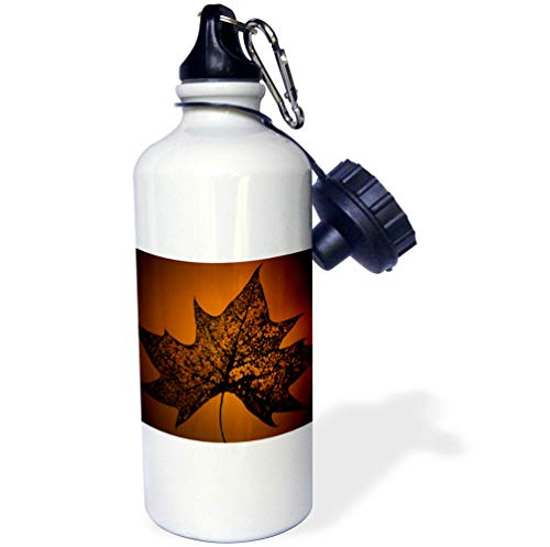 3dRose Stamp City - Nature - Photograph of a Bug Eaten Maple Leaf on an Orange Background. - 21 oz Sports Water Bottle (wb_295258_1) by 3dRose