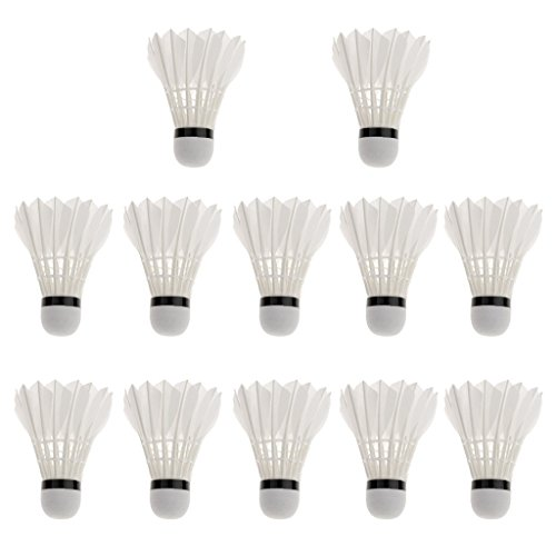 Tima A+2765 XXT Feather Shuttlecock (Pack of 12) Price & Reviews