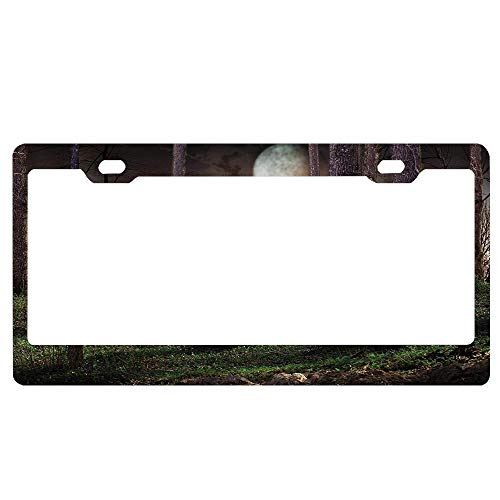 SDGlicenseplateframeIUY Dark Night in The Forest with Full Moon Horror Theme Grunge Style Halloween Photo Blessed License Plate Cover Decorative Car Tag Sign Metal Auto Tag Novelty License Plate -