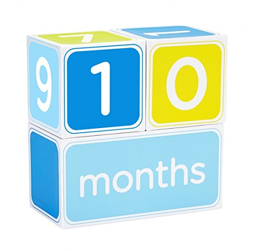Birthday Chart 1st Growth (Pearhead Baby Age Photo Sharing Blocks, Blue)