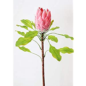 "Artificial Protea Flower in Pink - 37.5"" Tall 91"