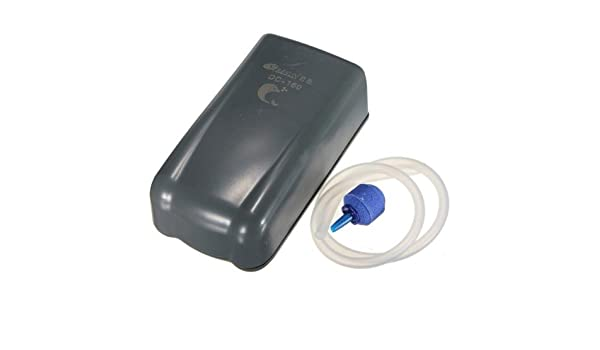 ... DC Battery Portable Air Pump Fish Tank+ Air Stone Tube DC160 // Bomba de aire portátil de baterías de corriente continua Resun pecera + piedra: Health ...