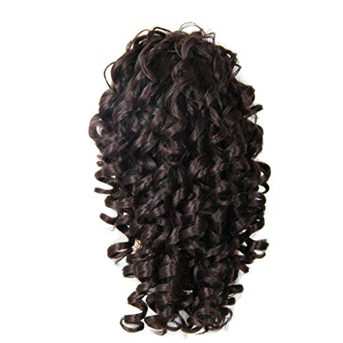 Hair Wig Outdoor,FAPIZI Lace Front Human Hair Wigs Pre Plucked with Baby Hair Curly Brazilian Remy Hair Wig Brown]()