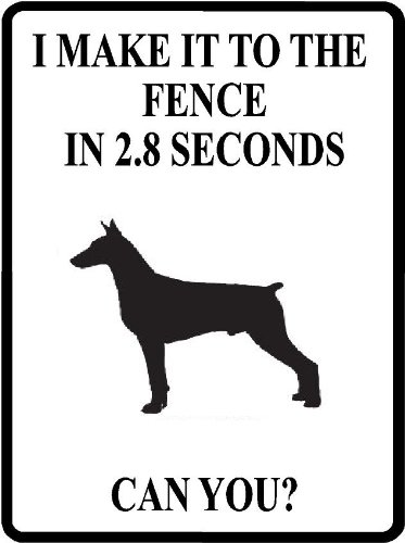 SECONDS Doberman Pinscher aluminum outdoors product image