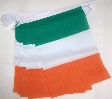 IRELAND 3 meters BUNTING FLAG 10 flags 9'' x 6'' - IRISH STRING flags 15 x 21 cm - AZ (Irish Flag Bunting)
