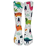 Cute Colorful Dinosaur Unisex Classics Socks