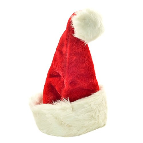 Christmas Party Costume Santa Hat ()