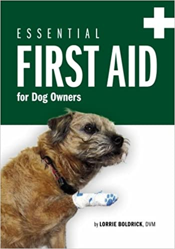 Essential First Aid for Dog Owners