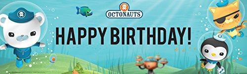 "The Octonauts Party Supplies - Vinyl Birthday Banner 18"" x 6"