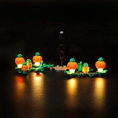 LIGHTAILING Light Set for (Harry Potter Hagrid's Hut: Buckbeak's Rescue) Building Blocks Model - Led Light kit Compatible with Lego 75947(NOT Included The Model): Toys & Games