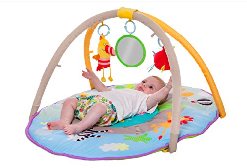 Jungle Pals Gym With Play Mat Best For New Born Amp Babies