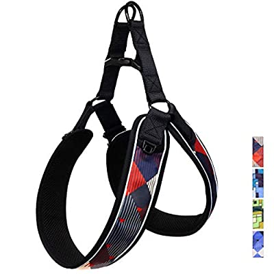 Taglory Dog Harness Medium Large,Reflective Mess Padded No Pull Vest,Easy Walk & No Escape Choke Free Harness