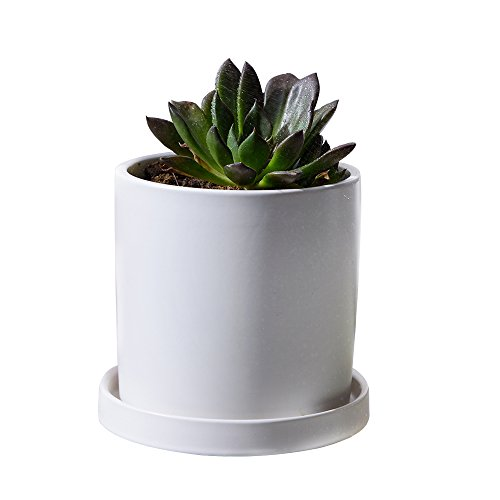 GeLive Small Matt White Ceramic Succulent Planter, Flower Plant Pot with Drainage Hole and Tray Saucer, Nordic Minimalism, Elegant Modern Home Decor by GeLive