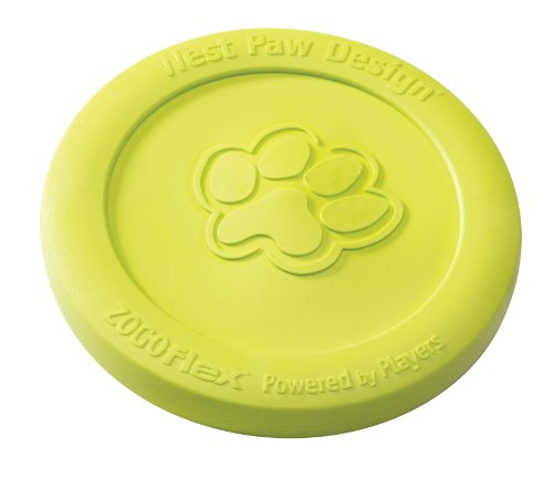 West Paw Design Guaranteed Tough Mini Zisc Dog Toy, Granny Smith Apple Green, My Pet Supplies