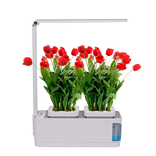 Grow Light Kitchen Herb Garden in US - 3