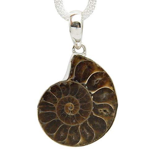(Fundamental Rockhound: Fossil Ammonite Gemstone Sterling Silver Pendant Necklace on 18