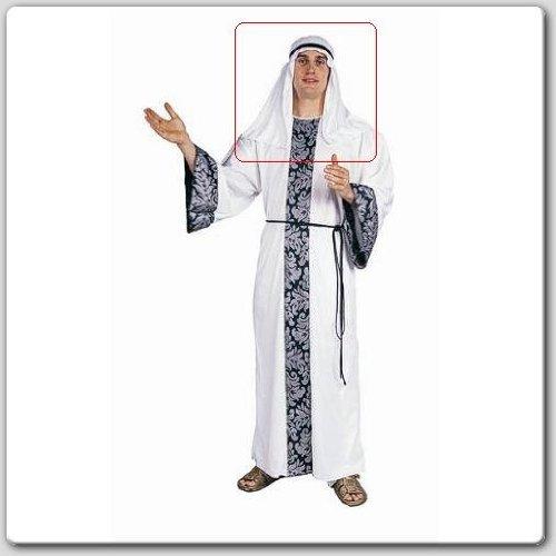 [Arab Headpiece Costume Accessory] (Arabian Woman Costumes)