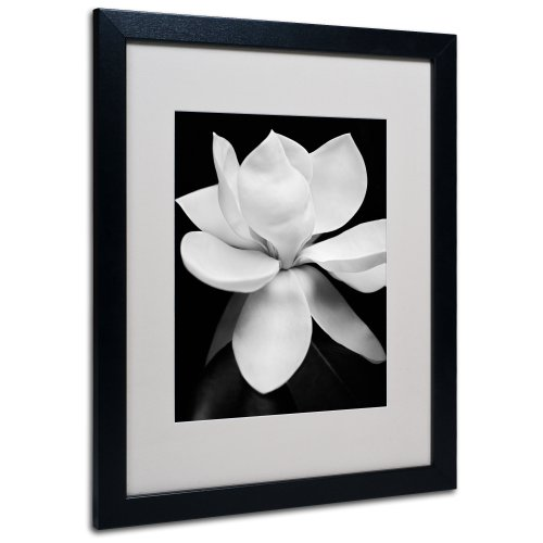 Magnolia Canvas Wall Art by Michael Harrison with Black Frame, 16 by 20-Inch