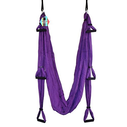 Pellor Deluxe Air Flying Yoga Hammock Aerial Yoga Hammock Belt Fitness Swing Hammock With 440Lb Load (Violet)
