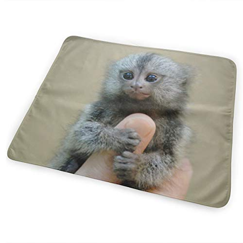 Klnsha7 Marmoset and Capuchin Monkeys Changing Pad for sale  Delivered anywhere in USA