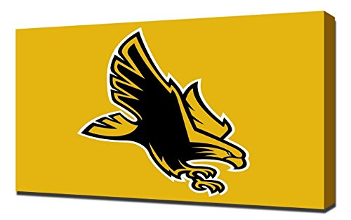 (Lilarama USA Southern Mississippi Golden Eagles 4 - Canvas Art Print - Wall Art - Canvas Wrap)