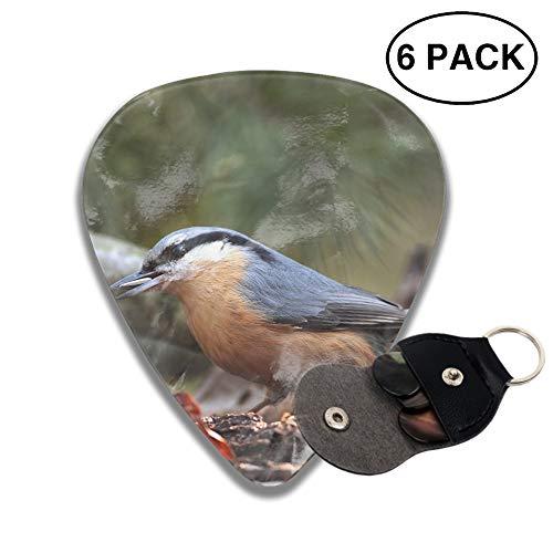 Guitar Picks Animal Nuthatch Bird Celluloid Plectrum Thin Medium Heavy Bass 3D Printed Variety Pick Mini Music Gift Grip -6pcs