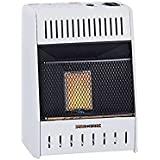 Procom Heating TV209320 6K BTU NAT Wall Heater