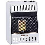 Procom Heating TV209320 6K BTU NAT Wall Heater