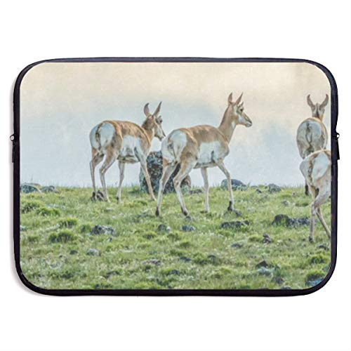 (Funny Design Pronghorn Antelope in Field Laptop Sleeve Waterproof Neoprene Diving Fabric Protective Briefcase Laptop Bag for IPad, Notebook/Ultrabook/Acer/Asus/Dell)