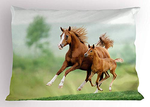 K0k2t0 Horse Decor Pillow Sham, Running Chestnut Horses Mare and Foal Meadow Scenic Summer Day Outdoors, Decorative Standard Queen Size Printed Pillowcase, 30 X 20 inches, Light Brown - Chestnut Foal